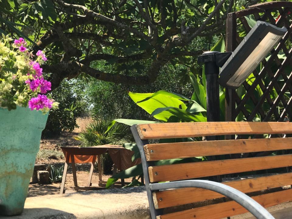 bed-a-lu-fanizza-cutrofiano-giardino