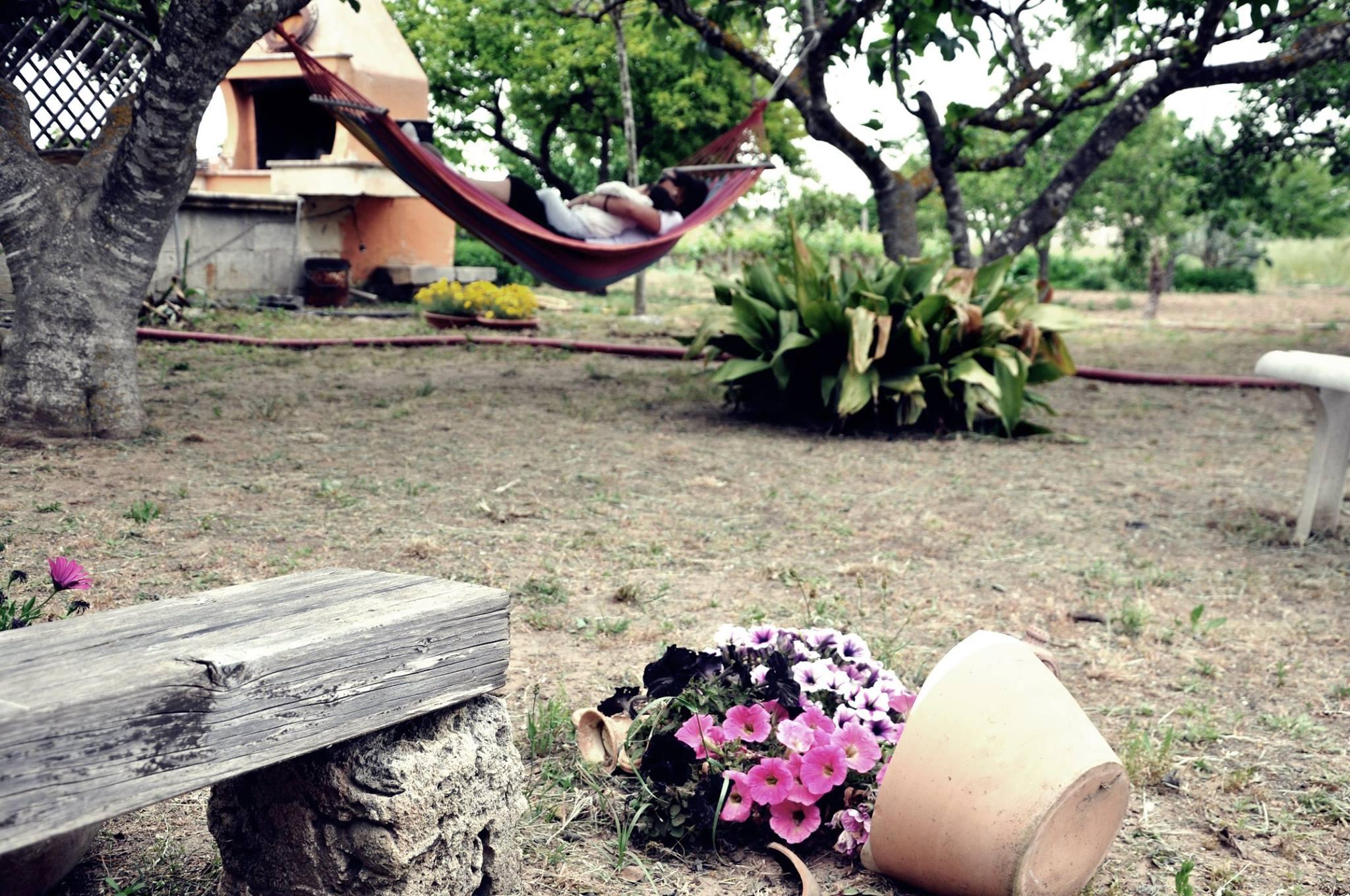 B&B -a-lu-fanizza-giardino-cutrofiano